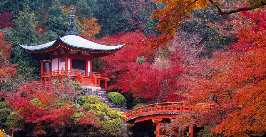 Nét đẹp thanh tịnh của đền Daigo-ji Nhật Bản.