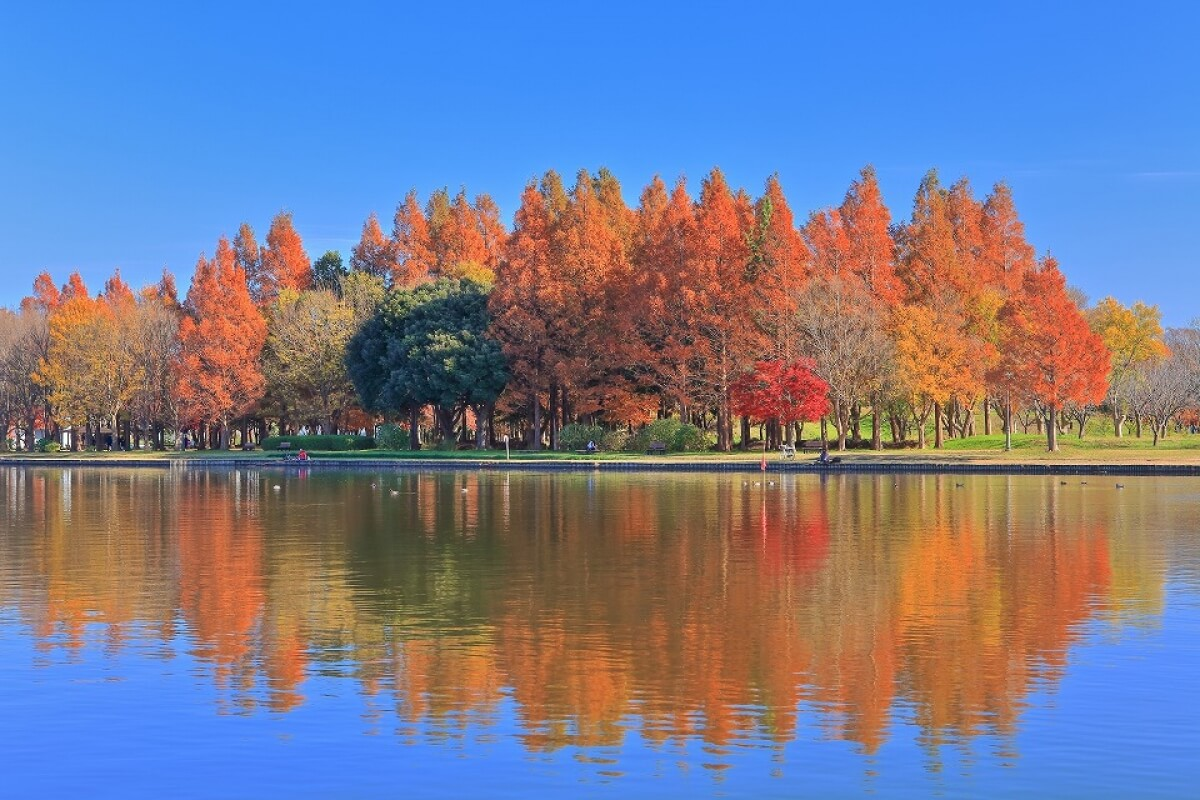 Công viên Mizumoto.