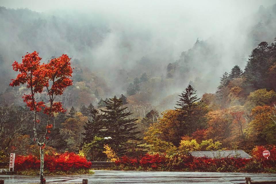 Du Lịch Nhật Bản Mùa Lá Đỏ Khoảng thời Gian Lý Tưởng Trong năm