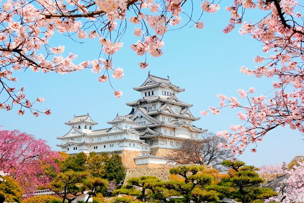 """Lâu đài Himeji có tên là """"White Heron"""""""