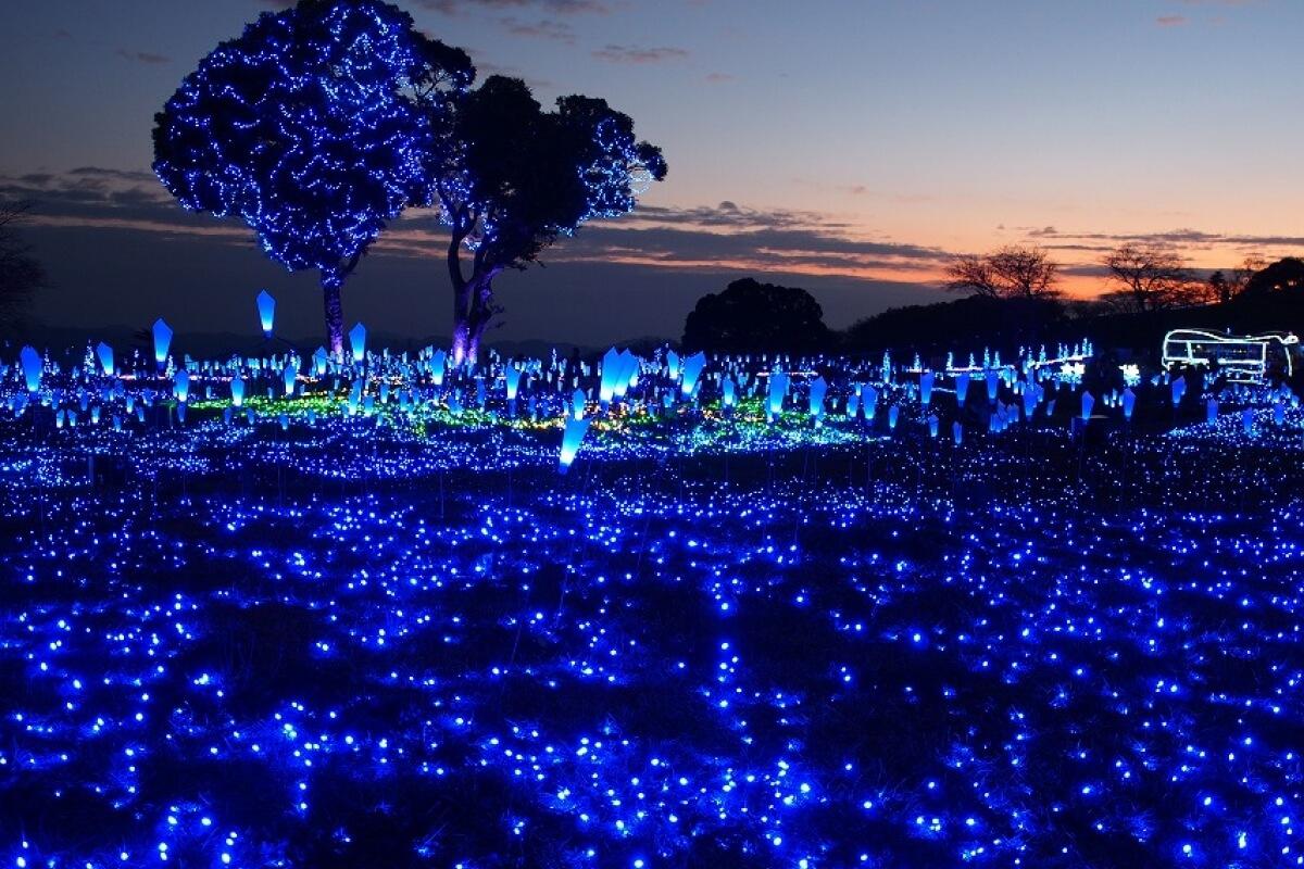Cảm nhận vẻ đẹp thiên nhiên tuyệt vời Nhật Bản tại Mother Farm, Chiba.