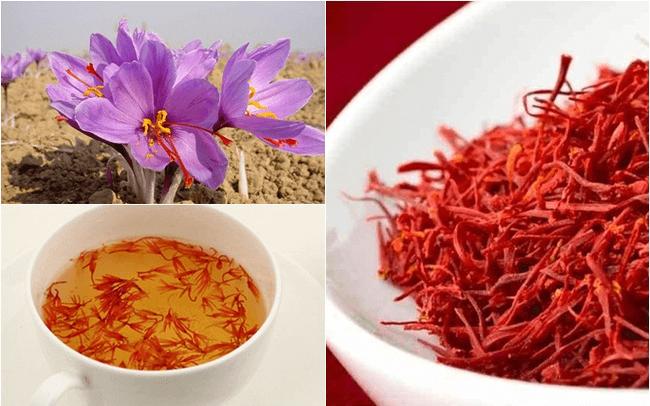 nhuỵ hoa nghệ tây Ấn Độ