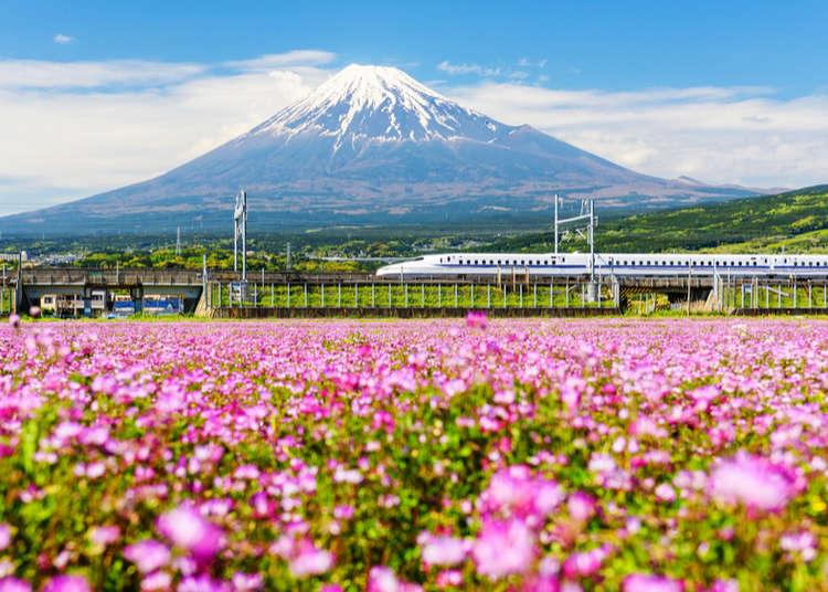 Nhật Bản vào tháng 5